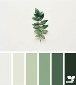 verde salvie