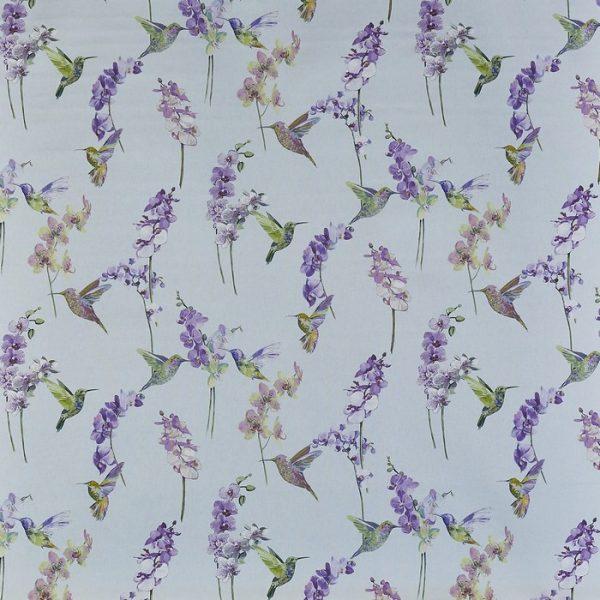 Draperii Humming bird Hyacinth