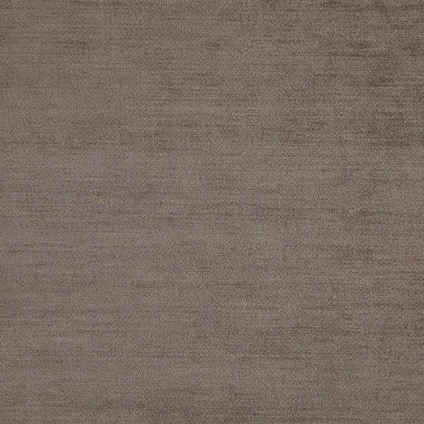 Catifea pentru tapiterie Baron 10 (FiberGuard)