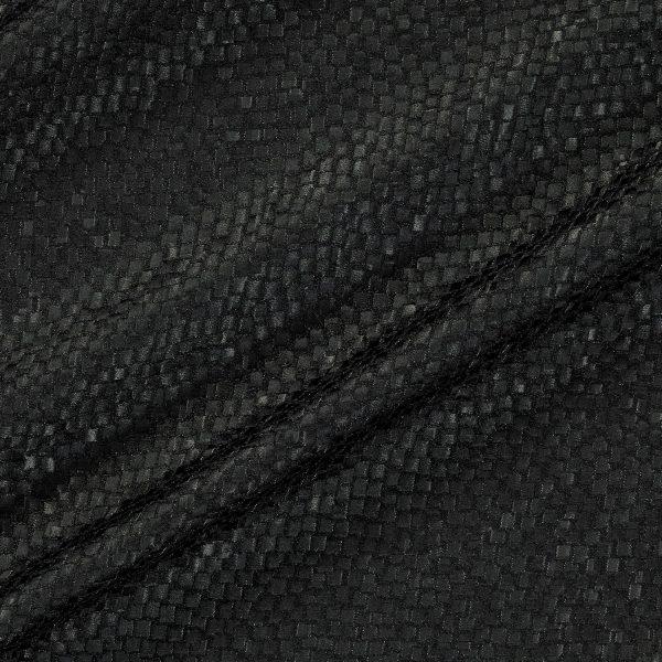 Draperii Tesserae Raven