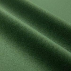 catifea verde